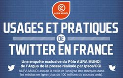 Usages-et-pratique-twitter-en-france