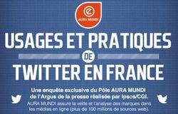 Usages-et-pratique-twitter-en-france
